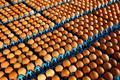 EU Commissioner calls for summit over major egg contamination scare