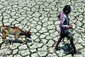 Drought-affected states seek water from each other