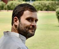 Rahul Gandhi in Himachal Pradesh: Congress vice