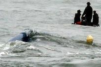 Divers enter South  Korean ferry, arrest warrant sought for captain