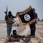 UK government creates anti-ISIS Twitter profile, receives lukewarm response