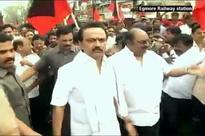 Jallikattu Live: More Celebrities Join Protest; Ordinance Soon, Says TN CM
