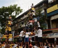 Dahi handi mandals in Maharashtra remain confused over Supreme Court ruling