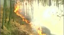 Rajnath Singh assures Uttarakhand help to douse forest fire
