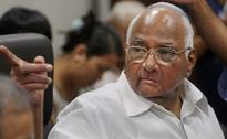 Maharashtra Chief Minister is Young, He Needs More Maturity: Sharad Pawar