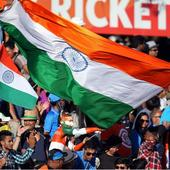 World Cup 2015: Volatile fans gulp down end of India's World Cup fairytale