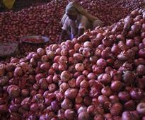 Govt extends export benefit to onions amid price crash
