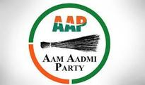 Punjab govt must release white paper on electricity: AAP