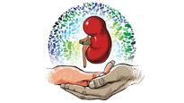 Delhi High Court allows distant kin to donate kidney to ailing doctor