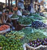 Retail inflation dips to 8.28% in May