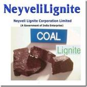 Govt to divest 5% in Neyveli Lignite for Rs 700cr: Srcs