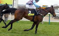 Controversial knacker's yard approved in racehorse heartland