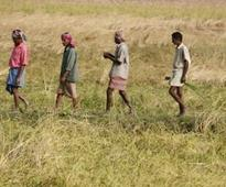 Budget 2015: Govt raises farm credit target to Rs 8.5 lakh cr for 2015-16