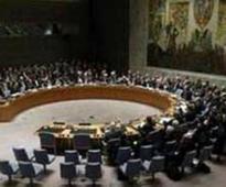 UN Security Council Blasts 'Heinous' Murder of British Aid Worker