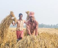 Recite Hanuman Chalisa to save crops from calamities: BJP leader to farmers
