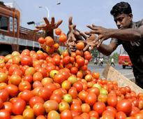 Tomato prices soar upto Rs 80/kg; government says keeping close eye