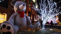 Valentine's Day week: 5 reasons why people love teddy bears!